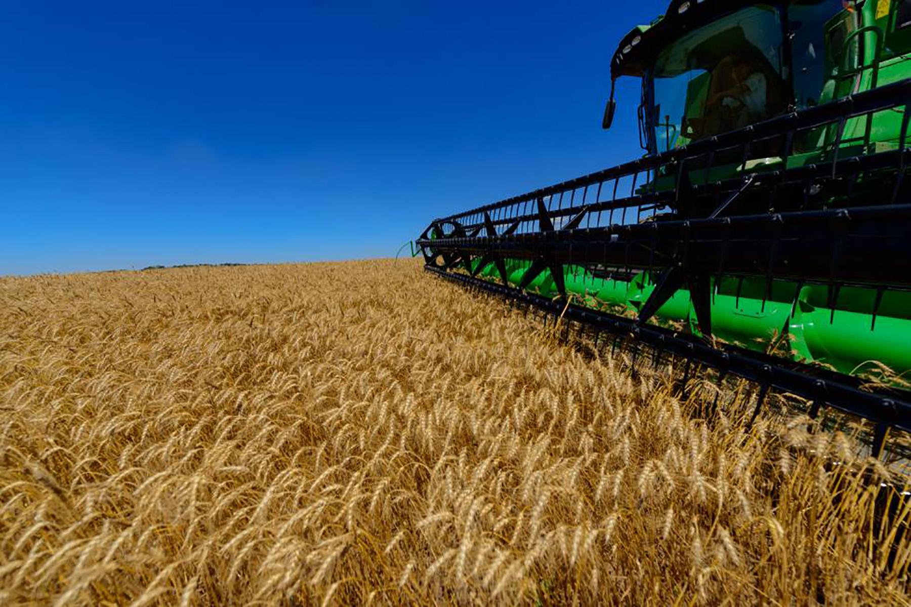 MAPA prevê aumento de 27% na produção de grãos